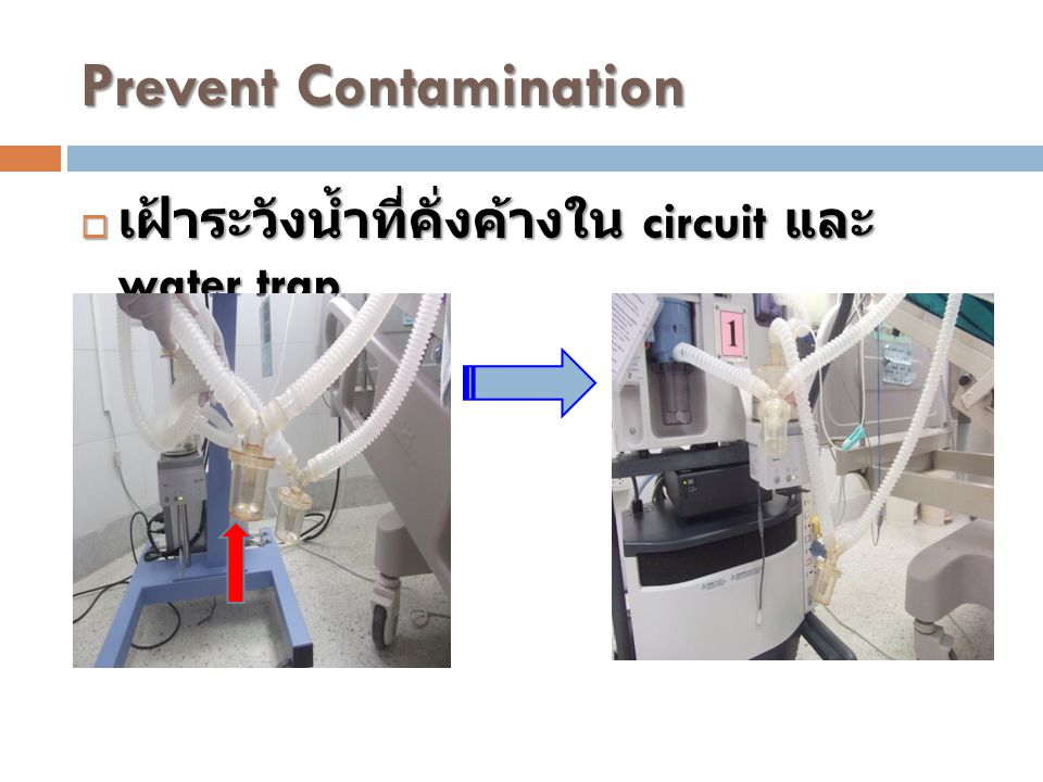 Prevent Contamination  เฝ้าระวังน้ำที่คั่งค้างใน circuit และ water trap