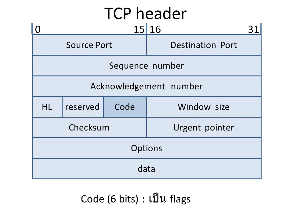 TCP header Source PortDestination Port Sequence number Acknowledgement number HLreservedCodeWindow size ChecksumUrgent pointer Options data 0151631 Co