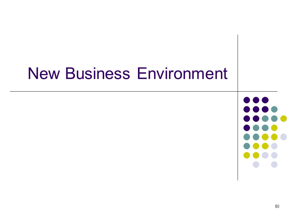 80 New Business Environment