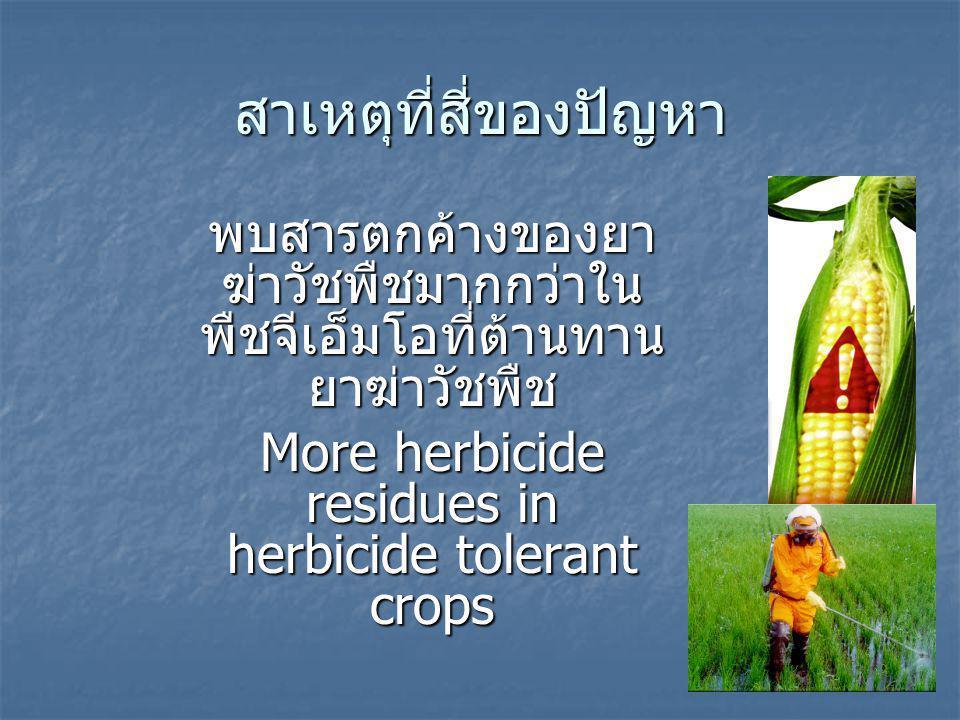 สาเหตุที่สี่ของปัญหา พบสารตกค้างของยา ฆ่าวัชพืชมากกว่าใน พืชจีเอ็มโอที่ต้านทาน ยาฆ่าวัชพืช More herbicide residues in herbicide tolerant crops