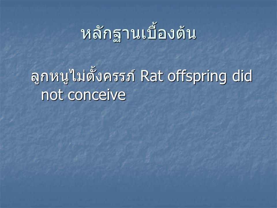 หลักฐานเบื้องต้น ลูกหนูไม่ตั้งครรภ์ Rat offspring did not conceive