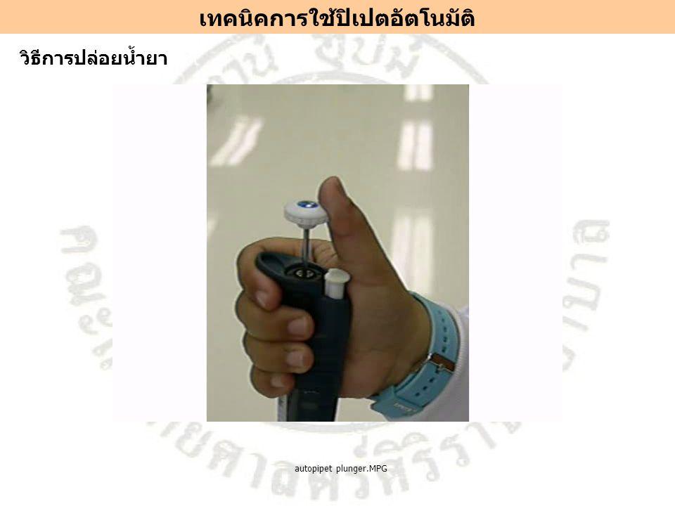 วิธีการปล่อยน้ำยา เทคนิคการใช้ปิเปตอัตโนมัติ autopipet plunger.MPG