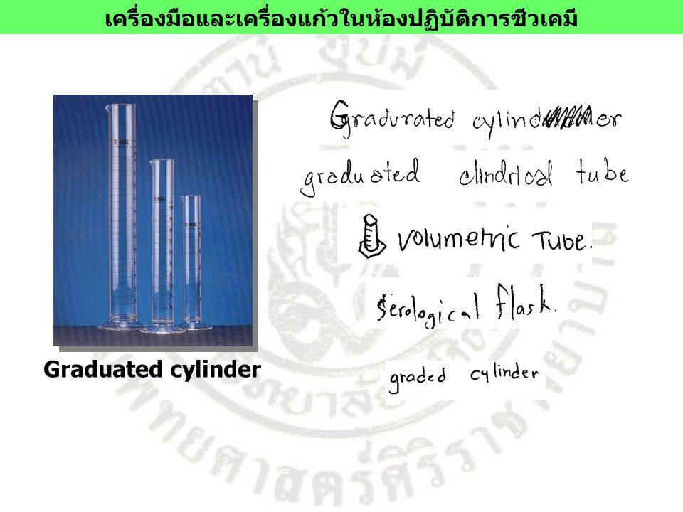 Graduated cylinder เครื่องมือและเครื่องแก้วในห้องปฏิบัติการชีวเคมี
