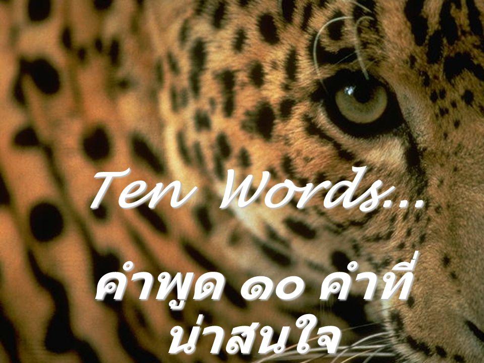 Ten Words... คำพูด ๑๐ คำที่ น่าสนใจ