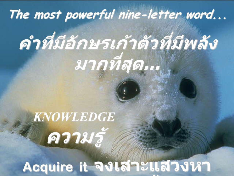 The most enviable eight-letter word.คำที่มีอักษรแปดตัวที่น่าอิจฉา ที่สุด.....