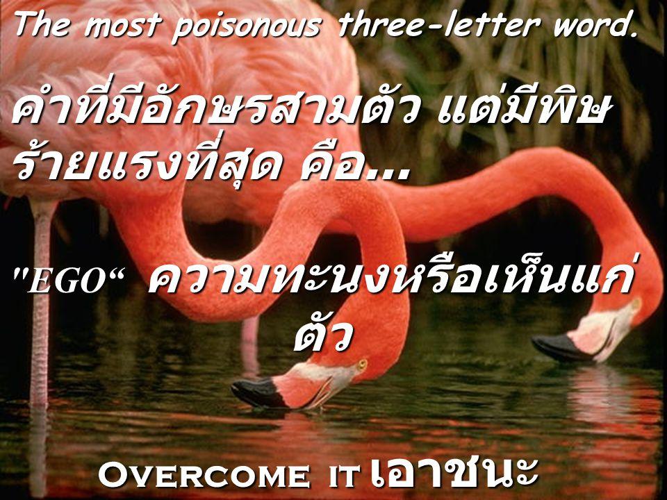 The most satisfying two-letter word...คำที่มีอักษรสองตัว แต่เป็นคำที่น่าพึง พอใจที่สุด คือ....