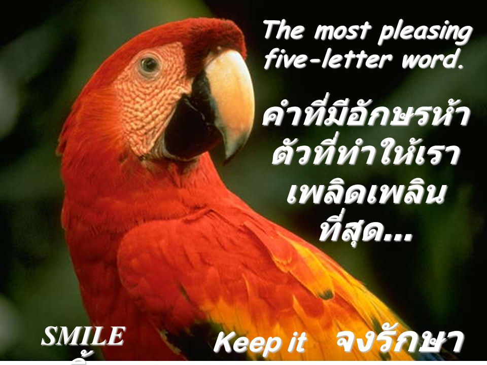 The most used four-letter word...คำที่มีอักษรสี่ตัว......