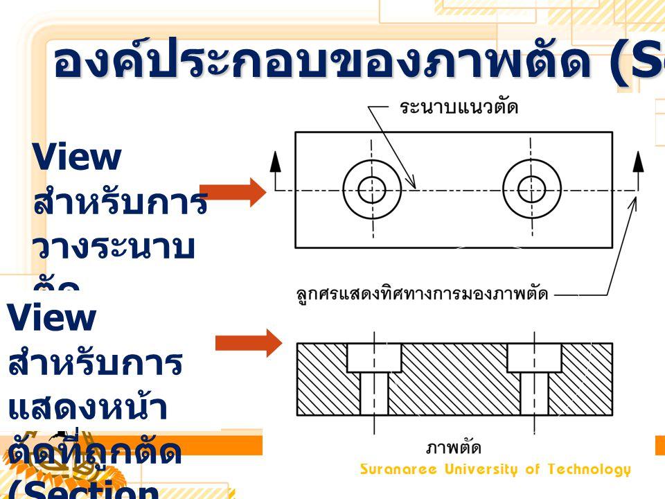 View สำหรับการ วางระนาบ ตัด View สำหรับการ แสดงหน้า ตัดที่ถูกตัด (Section View) องค์ประกอบของภาพตัด (Section view)