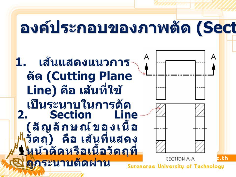 2. Section Line ( สัญลักษณ์ของเนื้อ วัตถุ ) คือ เส้นที่แสดง หน้าตัดหรือเนื้อวัตถุที่ ถูกระนาบตัดผ่าน 1. เส้นแสดงแนวการ ตัด (Cutting Plane Line) คือ เส