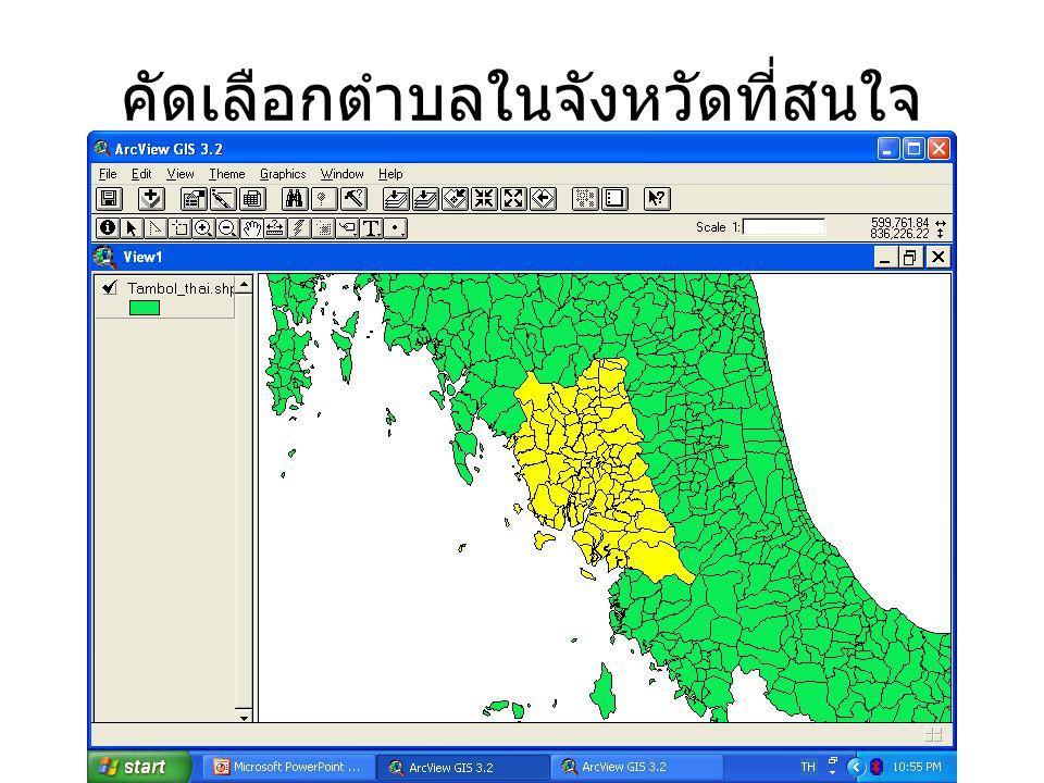 ข้อมูลในส่วนของตารางก็จะมีครบทุก อำเภอและตำบลเช่นเดียวกัน ส่วนสีเหลืองคือส่วนของ ตรัง ที่ถูก เลือก