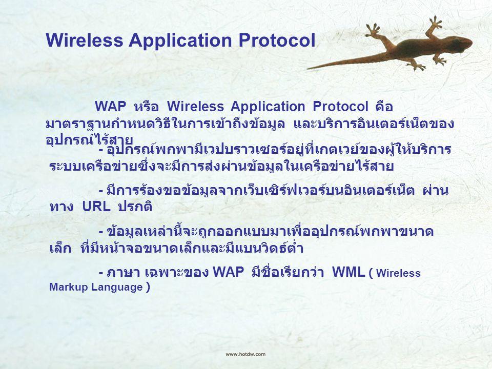 Wireless Application Protocol WAP หรือ Wireless Application Protocol คือ มาตราฐานกำหนดวิธีในการเข้าถึงข้อมูล และบริการอินเตอร์เน็ตของ อุปกรณ์ไร้สาย - อุปกรณ์พกพามีเวปบราวเซอร์อยู่ที่เกตเวย์ของผู้ให้บริการ ระบบเครือข่ายซึ่งจะมีการส่งผ่านข้อมูลในเครือข่ายไร้สาย - มีการร้องขอข้อมูลจากเว็บเซิร์ฟเวอร์บนอินเตอร์เน็ต ผ่าน ทาง URL ปรกติ - ข้อมูลเหล่านี้จะถูกออกแบบมาเพื่ออุปกรณ์พกพาขนาด เล็ก ที่มีหน้าจอขนาดเล็กและมีแบนวิดธ์ต่ำ - ภาษา เฉพาะของ WAP มีชื่อเรียกว่า WML ( Wireless Markup Language )
