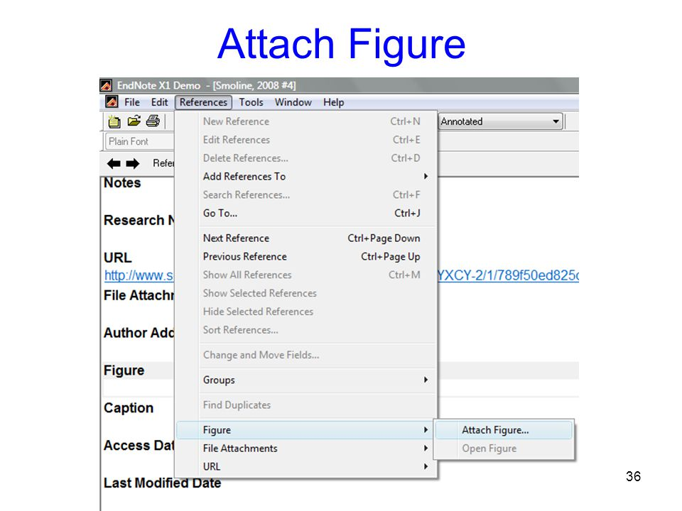 37 File Attachment, Figure & Caption