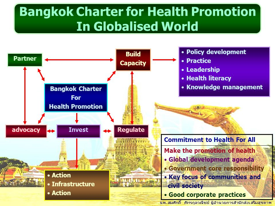 Policy development Practice Leadership Health literacy Knowledge management Build Capacity Partner advocacy Bangkok Charter For Health Promotion Inves