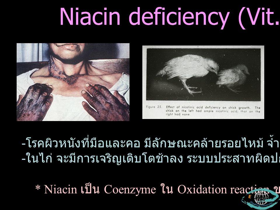 Niacin deficiency (Vit. G) - โรคผิวหนังที่มือและคอ มีลักษณะคล้ายรอยไหม้ จ้ำสีม่วง ผิวหนังอักเสบ - ในไก่ จะมีการเจริญเติบโตช้าลง ระบบประสาทผิดปกติ * Ni