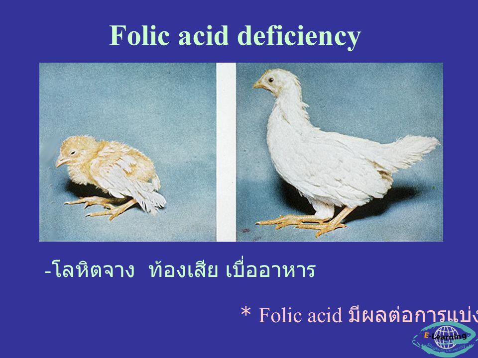 Folic acid deficiency - โลหิตจาง ท้องเสีย เบื่ออาหาร * Folic acid มีผลต่อการแบ่งเซลล์