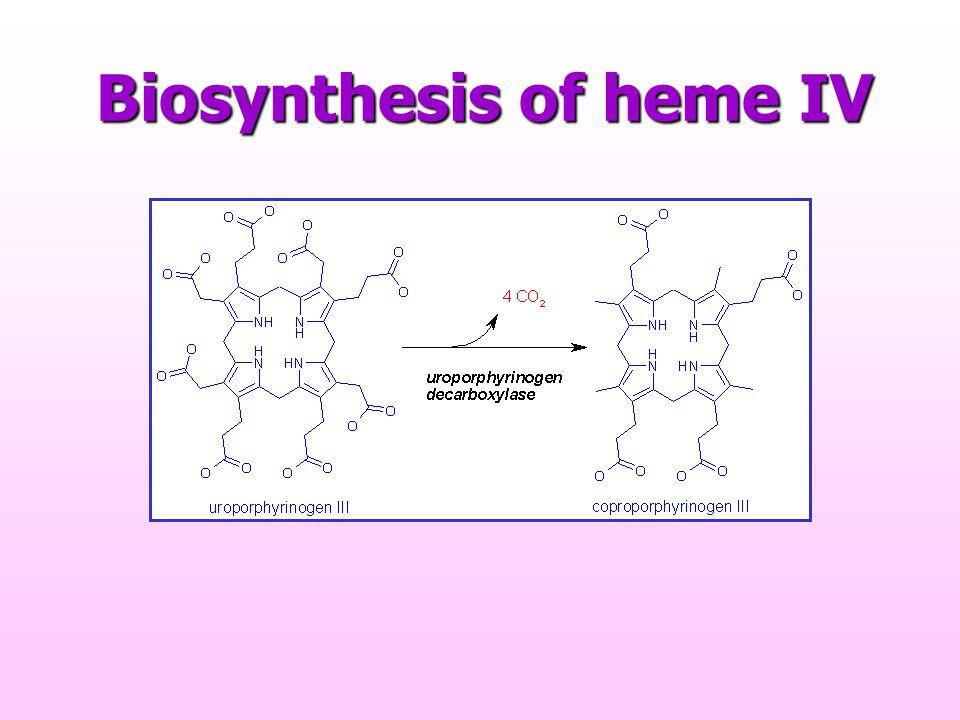 Biosynthesis of heme IV