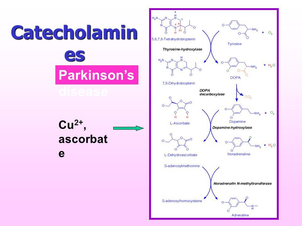 Catecholamin es Cu 2+, ascorbat e Parkinson's disease