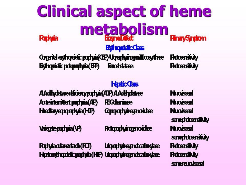 Clinical aspect of heme metabolism