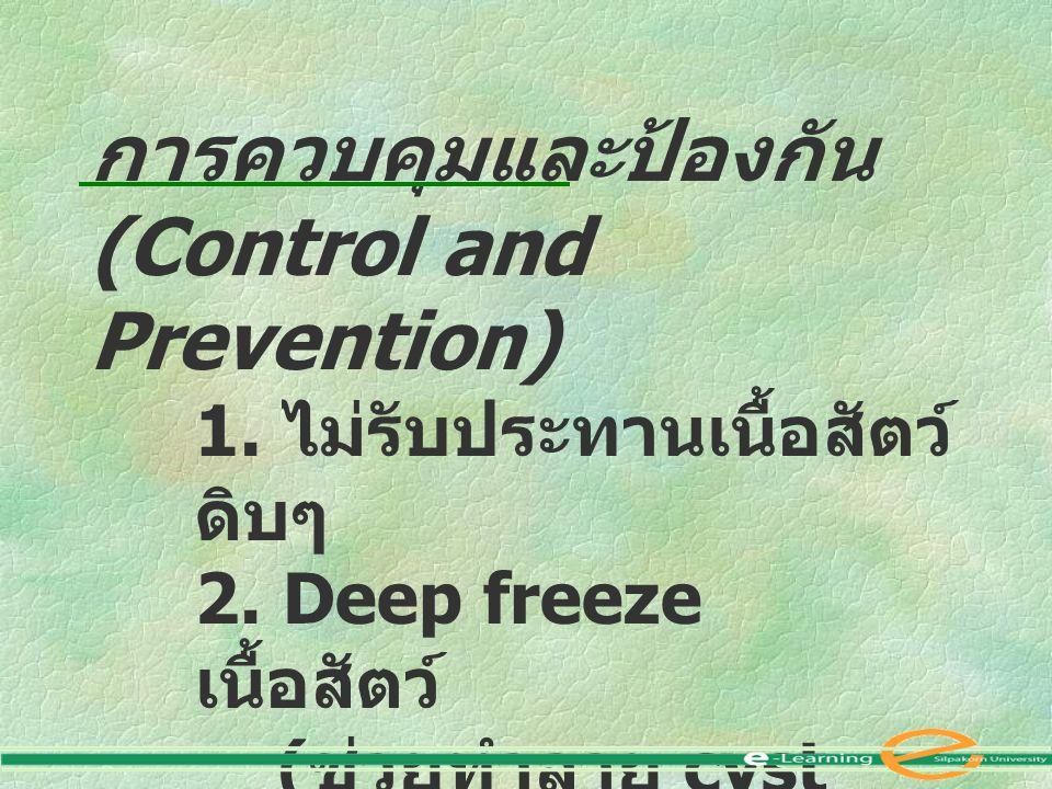 การควบคุมและป้องกัน (Control and Prevention) 1. ไม่รับประทานเนื้อสัตว์ ดิบๆ 2. Deep freeze เนื้อสัตว์ ( ช่วยทำลาย cyst ได้ )