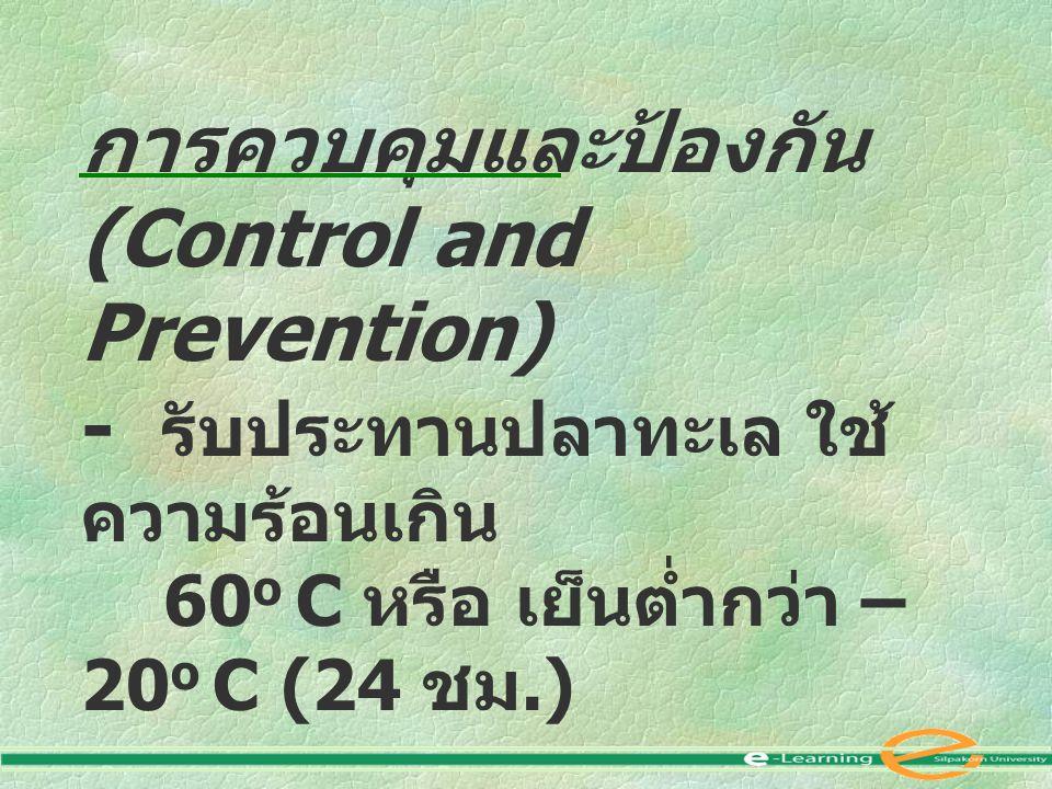การควบคุมและป้องกัน (Control and Prevention) - รับประทานปลาทะเล ใช้ ความร้อนเกิน 60 o C หรือ เย็นต่ำกว่า – 20 o C (24 ชม.)