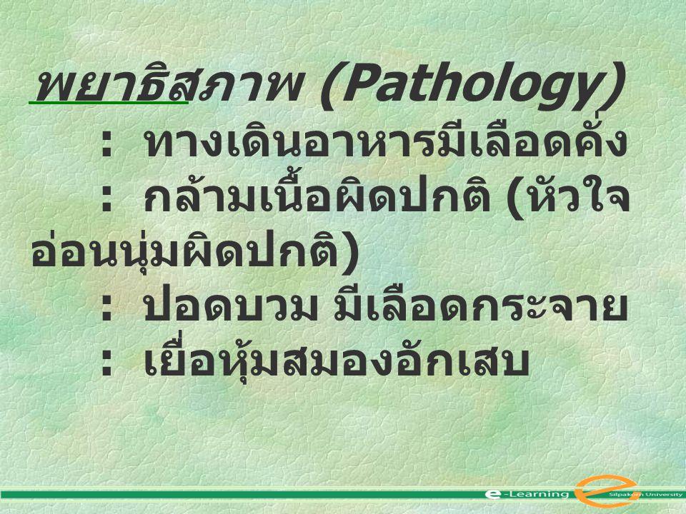 พยาธิสภาพ (Pathology) : ทางเดินอาหารมีเลือดคั่ง : กล้ามเนื้อผิดปกติ ( หัวใจ อ่อนนุ่มผิดปกติ ) : ปอดบวม มีเลือดกระจาย : เยื่อหุ้มสมองอักเสบ