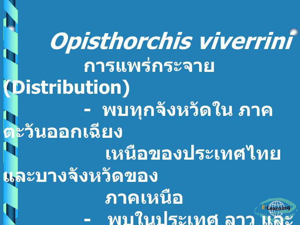 - การแพร่กระจาย Clonorchis sinensis พบในประเทศ จีน ไต้หวัน ญี่ปุ่น และไทย Opisthorchis viverrini พบใน ลาว ไทย และ เอเซียตะวันออกเฉียงใต้ Opisthorchis felineus พบในแถบยุโรป
