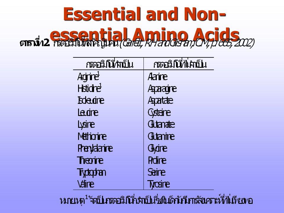 Essential and Non- essential Amino Acids