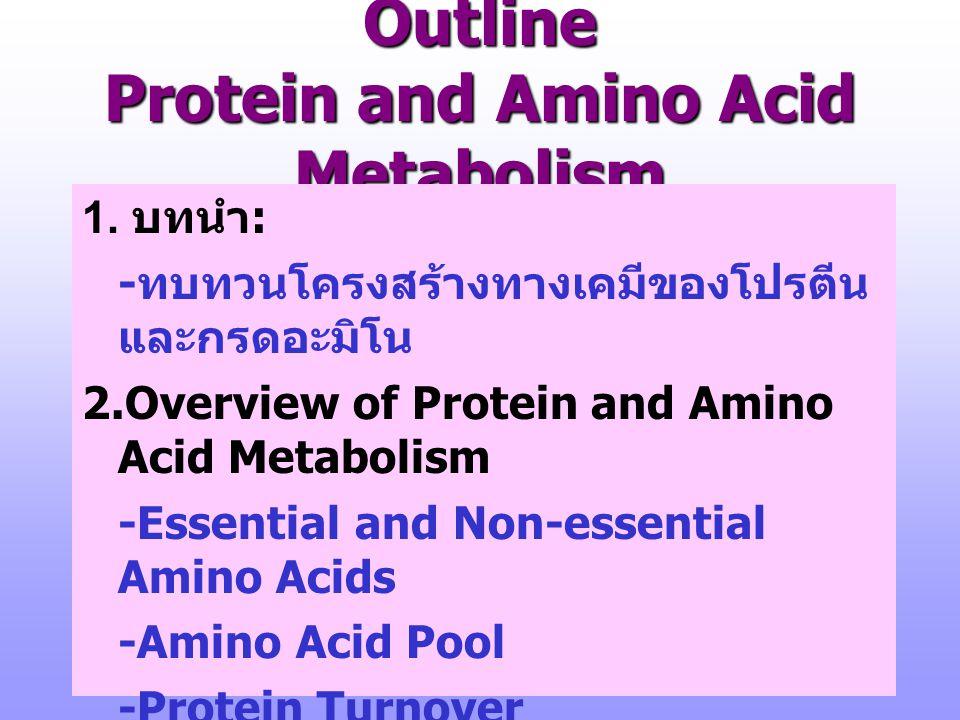 3.การย่อยอาหารโปรตีนและการดูด ซึม 4. การขนส่งกรดอะมิโน 5.