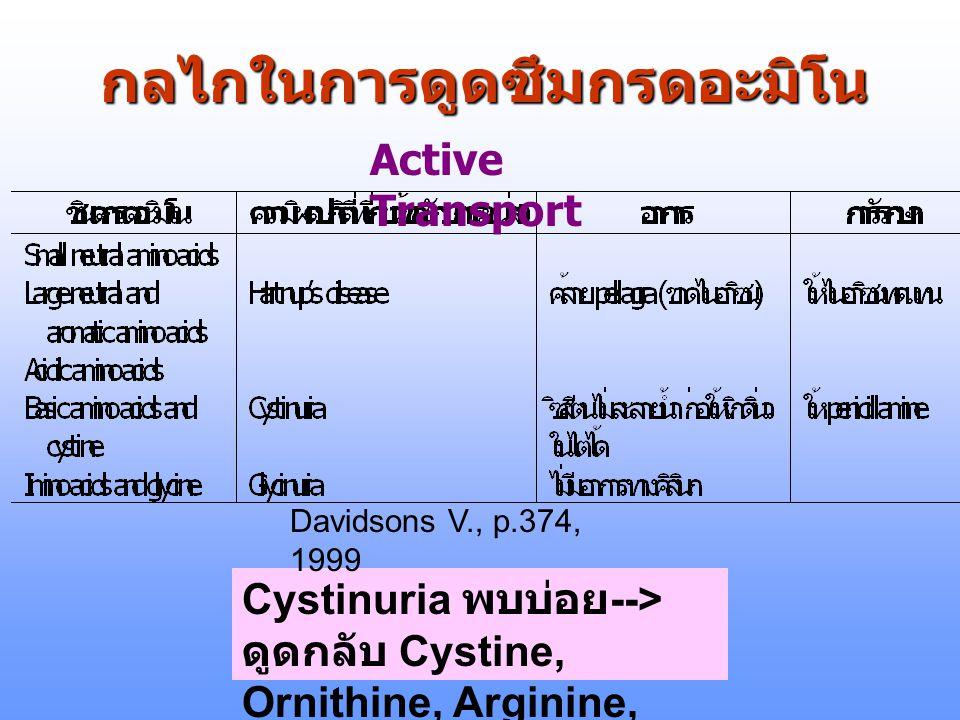 กลไกในการดูดซึมกรดอะมิโน Active Transport Cystinuria พบบ่อย --> ดูดกลับ Cystine, Ornithine, Arginine, Lysine ไม่ได้ Davidsons V., p.374, 1999