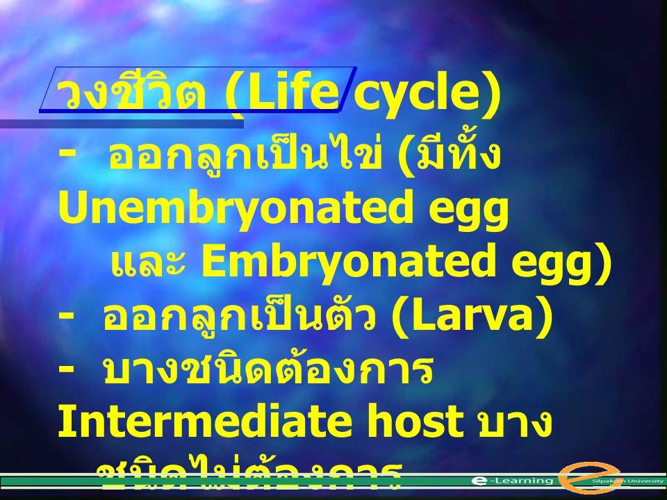 วงชีวิต (Life cycle) - ออกลูกเป็นไข่ ( มีทั้ง Unembryonated egg และ Embryonated egg) - ออกลูกเป็นตัว (Larva) - บางชนิดต้องการ Intermediate host บาง ชน