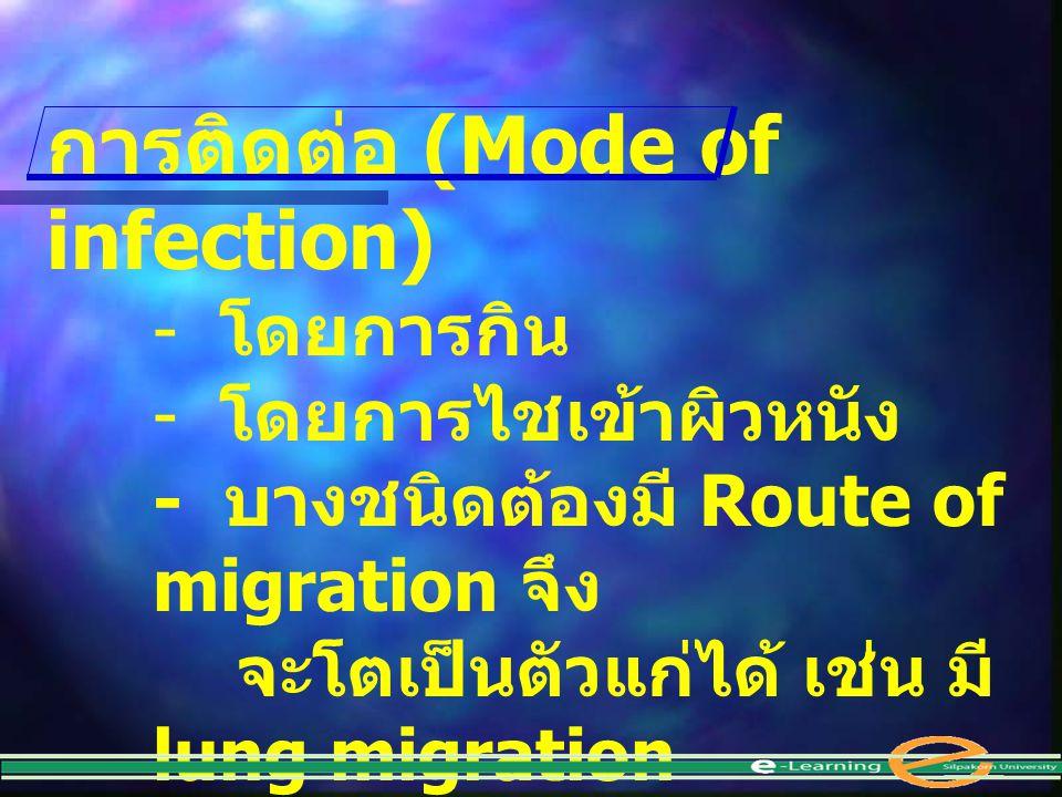 การติดต่อ (Mode of infection) - โดยการกิน - โดยการไชเข้าผิวหนัง - บางชนิดต้องมี Route of migration จึง จะโตเป็นตัวแก่ได้ เช่น มี lung migration
