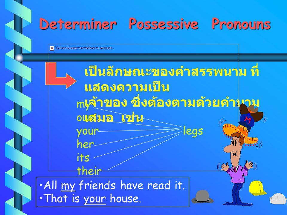 Determiner Possessive Pronouns เป็นลักษณะของคำสรรพนาม ที่ แสดงความเป็น เจ้าของ ซึ่งต้องตามด้วยคำนาม เสมอ เช่น my our your legs her its their All my friends have read it.