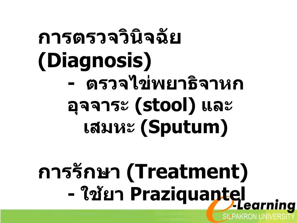 การตรวจวินิจฉัย (Diagnosis) - ตรวจไข่พยาธิจาหก อุจจาระ (stool) และ เสมหะ (Sputum) การรักษา (Treatment) - ใช้ยา Praziquantel
