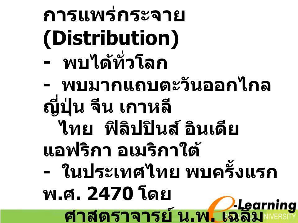 การแพร่กระจาย (Distribution) - พบได้ทั่วโลก - พบมากแถบตะวันออกไกล ญี่ปุ่น จีน เกาหลี ไทย ฟิลิปปินส์ อินเดีย แอฟริกา อเมริกาใต้ - ในประเทศไทย พบครั้งแรก พ.