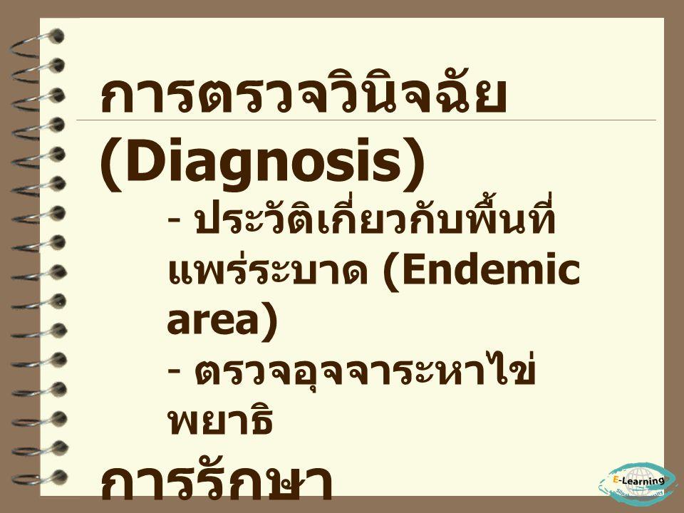 ระยะสุดท้าย - มีอาการ บวม ( หน้าบวม ท้อง บวม ขาบวม ) - ผิวหนังแห้ง อ่อนเพลีย - มักตายด้วย อาการ Intoxication ( อาการ พิษ )