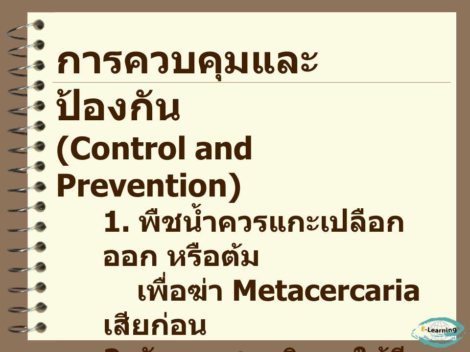 การตรวจวินิจฉัย (Diagnosis) - ประวัติเกี่ยวกับพื้นที่ แพร่ระบาด (Endemic area) - ตรวจอุจจาระหาไข่ พยาธิ การรักษา (Treatment) 1. รักษาตามอาการ 2. ให้ยา