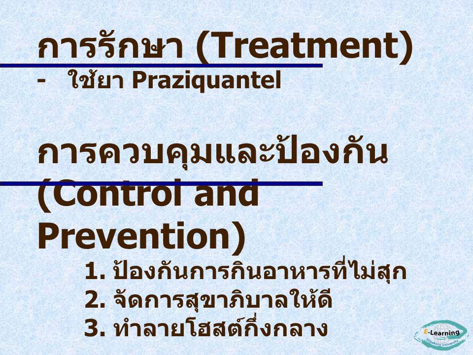 พยาธิสภาพ (Pathology) - เกิดการอักเสบบริเวณ caecum และ ascending colon ทำให้เกิดอาการ mucous diarrhea การตรวจวินิจฉัย (Diagnosis) - ตรวจหาไข่ในอุจจาระ