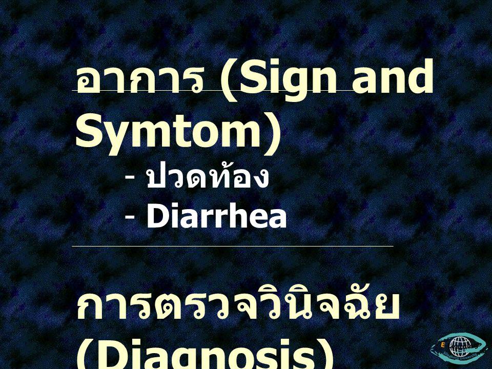อาการ (Sign and Symtom) - ปวดท้อง - Diarrhea การตรวจวินิจฉัย (Diagnosis) - ตรวจหาไข่ใน อุจจาระผู้ป่วย