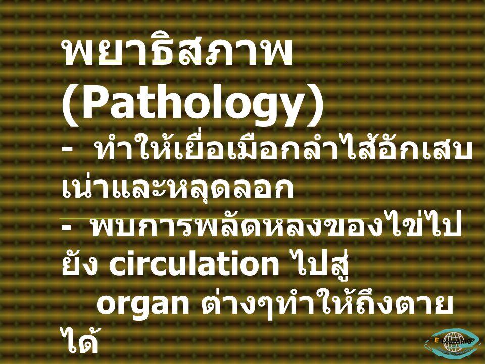 พยาธิสภาพ (Pathology) - ทำให้เยื่อเมือกลำไส้อักเสบ เน่าและหลุดลอก - พบการพลัดหลงของไข่ไป ยัง circulation ไปสู่ organ ต่างๆทำให้ถึงตาย ได้ อาการ (Sign