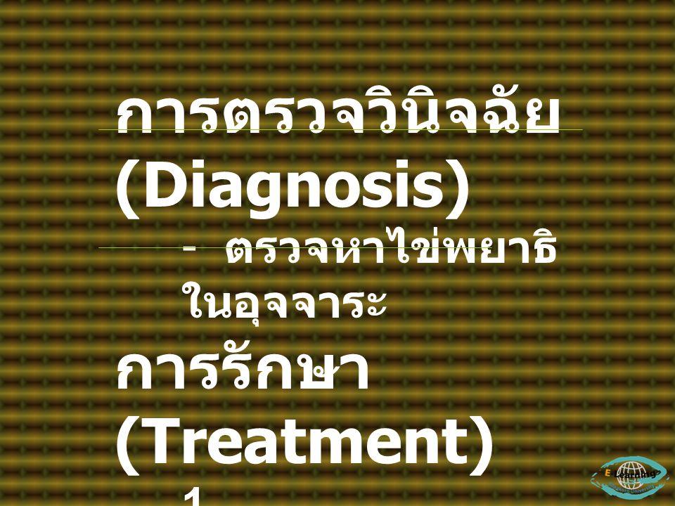 การตรวจวินิจฉัย (Diagnosis) - ตรวจหาไข่พยาธิ ในอุจจาระ การรักษา (Treatment) 1. Tetrachlorethylen e 2. Niclosamide 3. Praziquantel