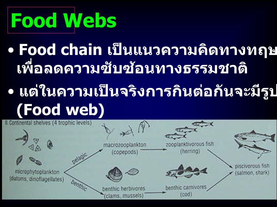Food chain เป็นแนวความคิดทางทฤษฎีที่สะดวก เพื่อลดความซับซ้อนทางธรรมชาติ Food Webs แต่ในความเป็นจริงการกินต่อกันจะมีรูปแบบเป็นสายใยอาหาร (Food web)