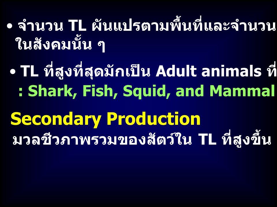 จำนวน TL ผันแปรตามพื้นที่และจำนวนชนิดสิ่งมีชีวิต ในสังคมนั้น ๆ TL ที่สูงที่สุดมักเป็น Adult animals ที่ไม่มีผู้ล่าอื่น : Shark, Fish, Squid, and Mammal Secondary Production มวลชีวภาพรวมของสัตว์ใน TL ที่สูงขึ้น ต่อหน่วยพื้นที่ต่อเวลา