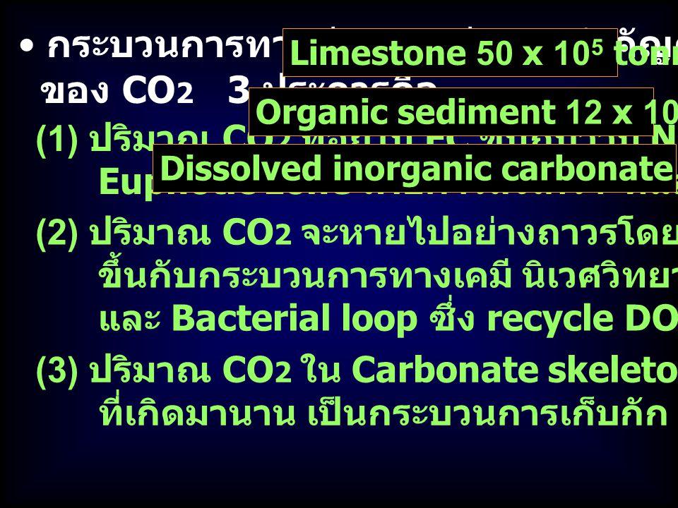กระบวนการทางชีววิทยามีความสำคัญต่อ C cycle และสมดุล ของ CO 2 3 ประการคือ (1) ปริมาณ CO 2 ที่อยู่ใน FC ขึ้นกับว่ามี New N เข้ามาในเขต Euphotic zone เพื่อการสังเคราะห์แสงมากน้อยแค่ไหน (2) ปริมาณ CO 2 จะหายไปอย่างถาวรโดยสะสมในตะกอน ขึ้นกับกระบวนการทางเคมี นิเวศวิทยา ตะกอนในทะเลลึก และ Bacterial loop ซึ่ง recycle DOC & POC (3) ปริมาณ CO 2 ใน Carbonate skeletons ของ Mar Organisms ที่เกิดมานาน เป็นกระบวนการเก็บกัก CO 2 ที่สำคัญ Limestone 50 x 10 5 tonnes of CO 2 Organic sediment 12 x 10 5 tonnes of CO 2 Dissolved inorganic carbonate 35 x 10 5 tonnes of CO 2