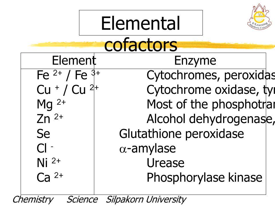 Elemental cofactors ElementEnzyme Fe 2+ / Fe 3+ Cytochromes, peroxidases,catalases Cu + / Cu 2+ Cytochrome oxidase, tyrosidase Mg 2+ Most of the phosp