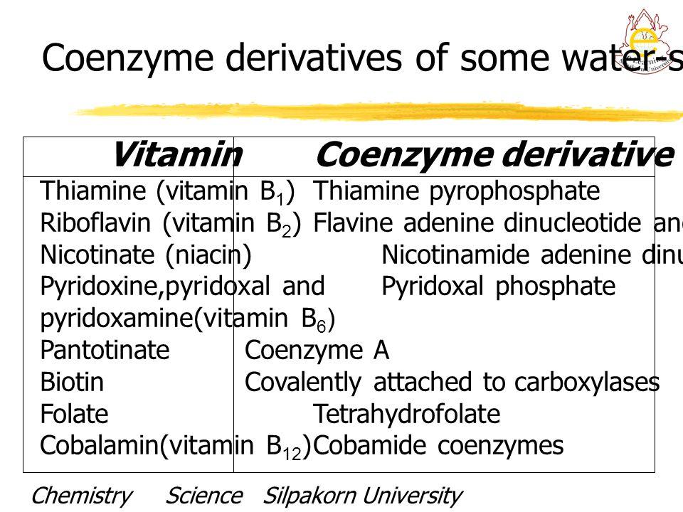 VitaminCoenzyme derivative Thiamine (vitamin B 1 )Thiamine pyrophosphate Riboflavin (vitamin B 2 )Flavine adenine dinucleotide and flavin mononucleoti