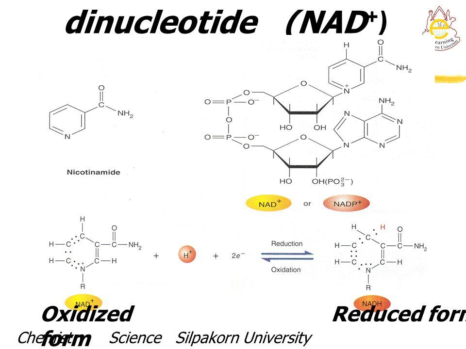 Nicotinamide adenine dinucleotide (NAD + ) Oxidized form Reduced form Chemistry Science Silpakorn UniversityDr. Porntip Chaimanee