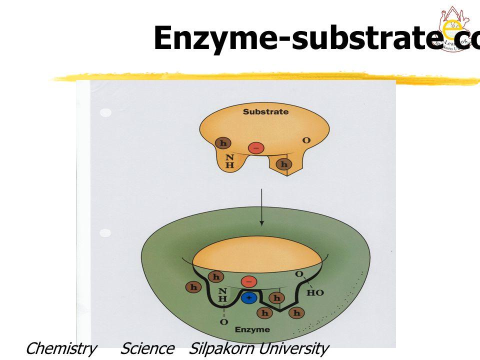 Enzyme-substrate complex Chemistry Science Silpakorn UniversityDr. Porntip Chaimanee
