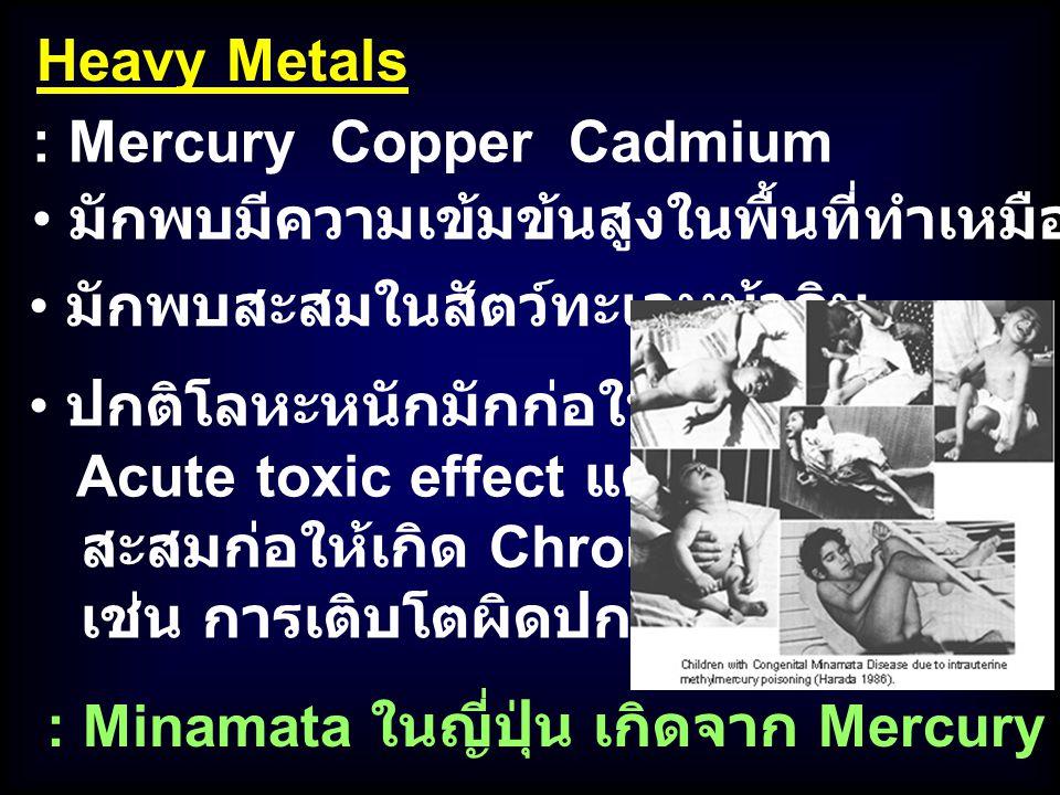 : Mercury Copper Cadmium Heavy Metals มักพบมีความเข้มข้นสูงในพื้นที่ทำเหมืองแร่ใกล้ / ในทะเล มักพบสะสมในสัตว์ทะเลหน้าดิน ปกติโลหะหนักมักก่อให้เกิด Acu