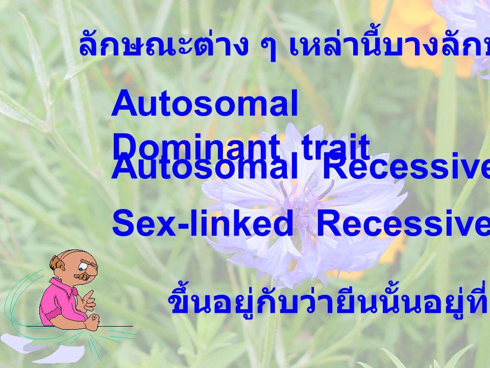Autosomal Dominant trait ลักษณะต่าง ๆ เหล่านี้บางลักษณะก็เรียก ขึ้นอยู่กับว่ายีนนั้นอยู่ที่ใด Sex-linked Recessive trait Autosomal Recessive trait