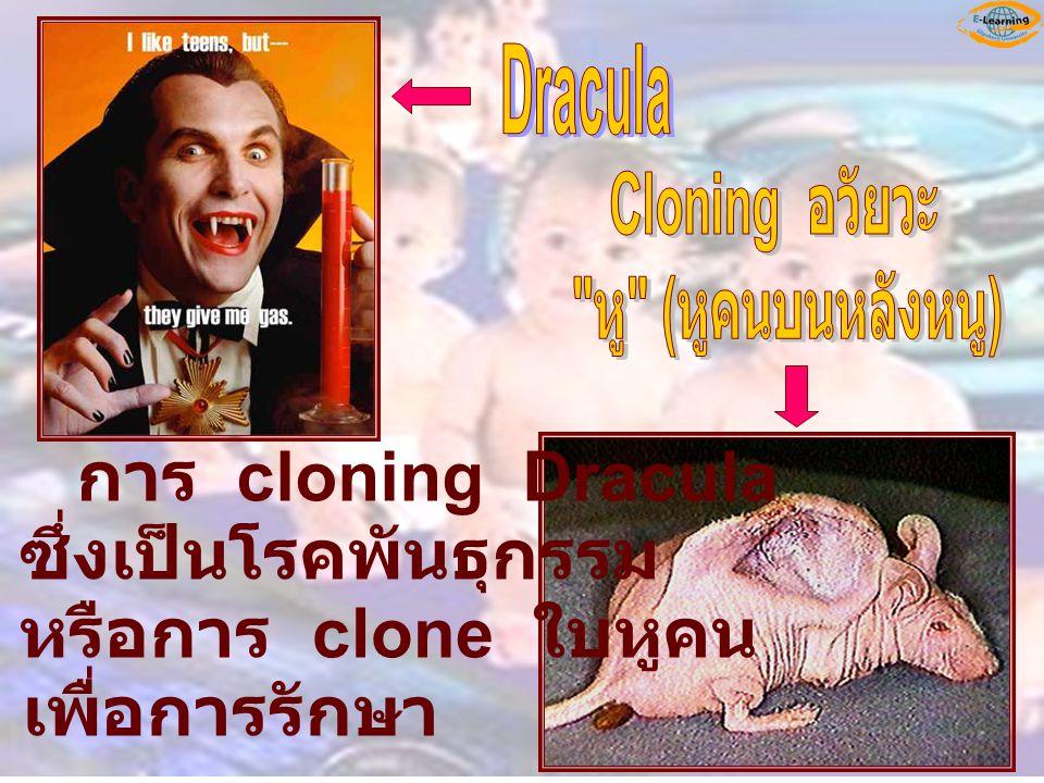 การ cloning Dracula ซึ่งเป็นโรคพันธุกรรม หรือการ clone ใบหูคน เพื่อการรักษา